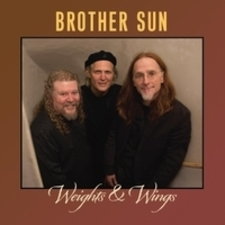 cover of Weights & Wings
